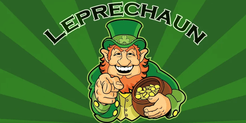 Leprechaun Review: How good is this robot