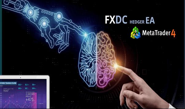 FXDC HEDGER EA Review
