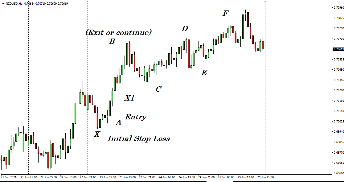 The figure above shows a 1-hour chart of NZD/USD.