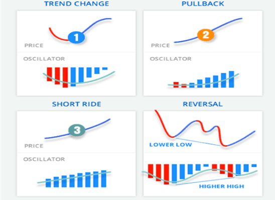Examples of the indicator's working methods